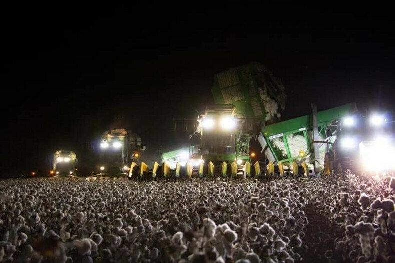 Если вы подумали, что это рок фестиваль, то у вас проблемы