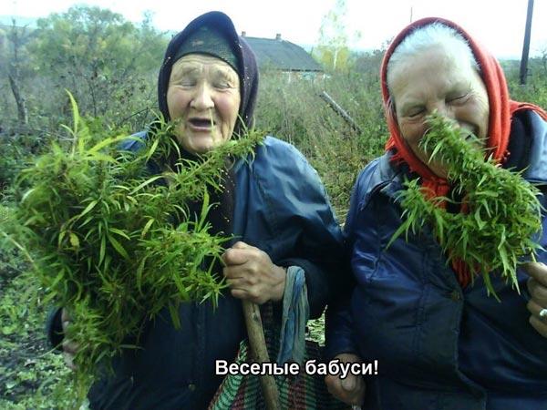 Веселые бабуси